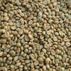 green robusta coffee beans-min